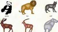 Hayvan Biyolojisi