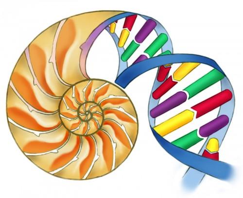 biyoloji özel ders